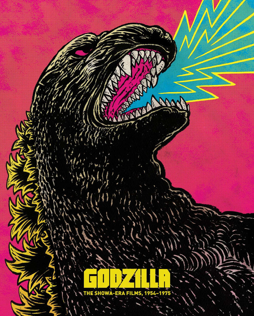Godzilla: The Showa Era Films box set